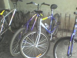 Sophia no Bicicletário